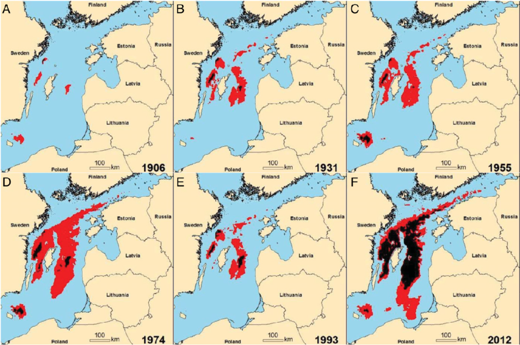 Rozkład przestrzenny stref w Bałtyku z obniżoną ilością tlenu w wodzie oraz martwych stref w czasie. Kolorem czerwonym zaznaczono obszary, w których koncentracja tlenu przy dnie jest poniżej 2 mg/l, a czarnym strefy, gdzie koncentracja jest bliska 0 mg/l. Cartstensen 2014.